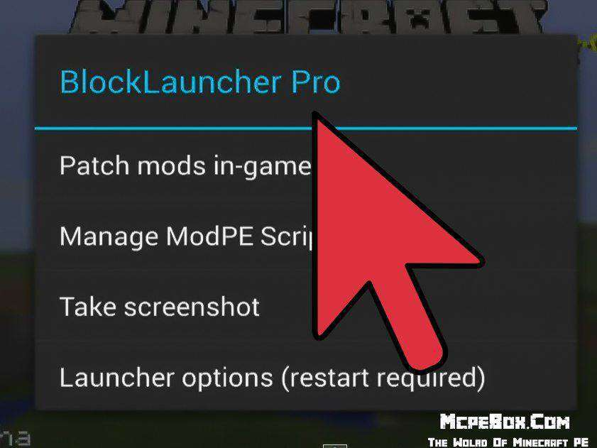 Install-Mods-on-Minecraft-PE-Step-1-Version-3