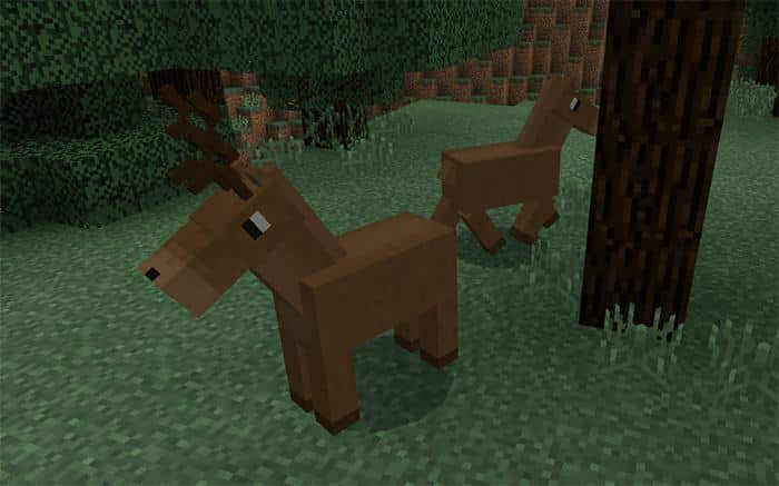 horse mods for minecraft Bedrock Edition