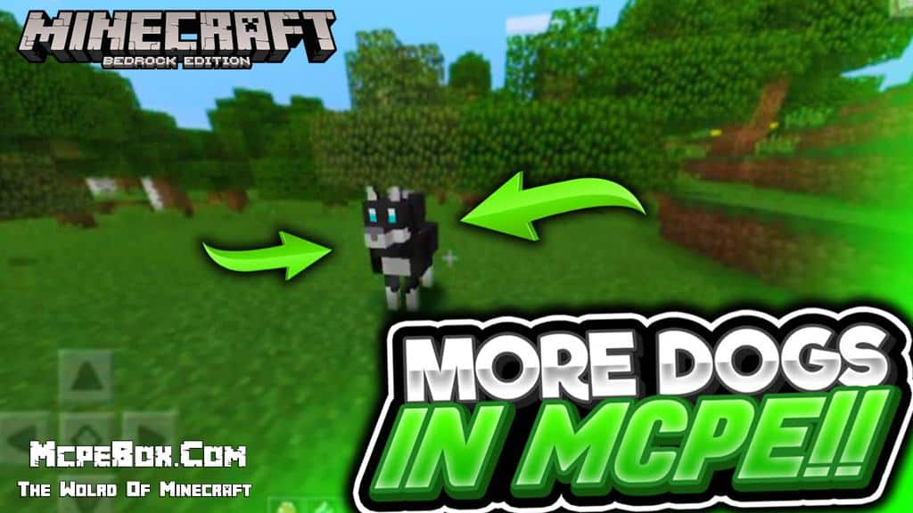 Dog Mods for Minecraft PE