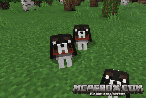 copious dog mod for minecraft pe