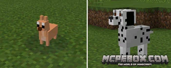 Doggy Mod for MCPE