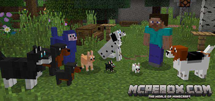 More Dogs Add-on for Mnecraft Bedrock Edition