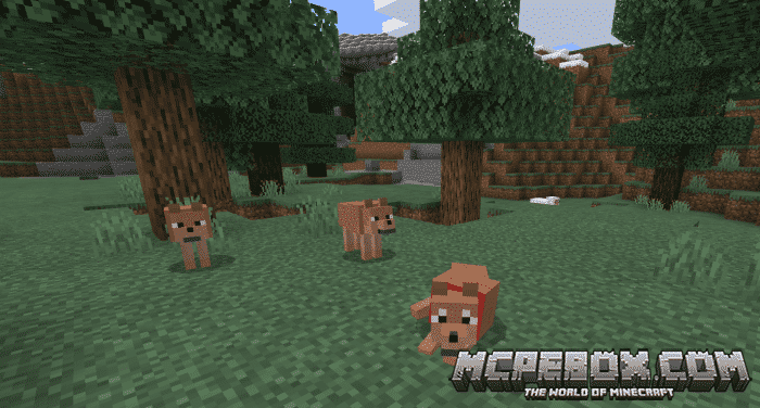 Wolves+ Add-on for Minecraft PE